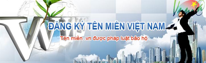 Tên miền Việt Nam .VN giá rẻ hơn cả tên miền quốc tế từ 1/2017