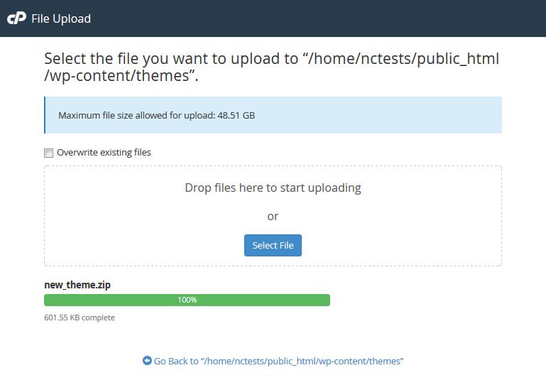 Hướng dẫn update theme và plugin WordPress thủ công